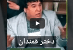 saleem shaheen