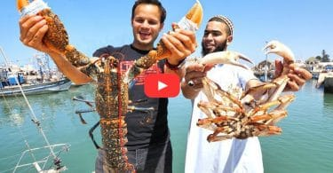 Mega Seafood and BBQ CAMEL in The Beautiful City of Morocco